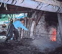 OUR FORESTER Mr.Matsuki tends the old charcoal kiln he restored to working order after finding it in our Afan woods. As we thin out the bent and sickly trees in a new section of woodland acquired by the trust (bottom left), there will be plenty of fuel to keep the kiln glowing red hot. | C.W. NICOL PHOTOS