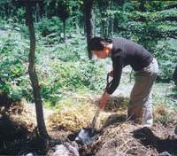 Eiji's widow Takeko plants a tree in his honor.