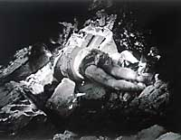 A child killed in the 1982 massacres at the Sabra and Shatila refugee camps in Lebanon by Christian  Phalangist militia forces allowed entry by the Israeli army, which was then occupying Beirut.