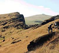 Members of the Easter Island Statue Project survey the Rano Raraku quarry. (Photo by Alice Hom, courtesy of Easter Island Statue Project)