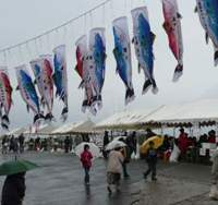 The Oma Tuna Festival, held every October, attracts crowds of sashimi gourmands. | HILLEL WRIGHT PHOTOS