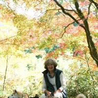 Animal Refuge Kansai founder Elizabeth Oliver relaxes with her dogs at the new ARK facility in Sasayama, Hyogo Prefecture, which is currently under construction.   ARK