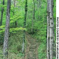Karuizawa retains much of its old charm -- a wealth of unspoiled nature.
