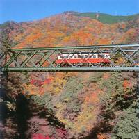 A mountain railway climbs uphill from Hakone-Yumoto to Gora, allowing passengers to enjoy breathtaking views of the gorge below in all its autumn finery.