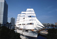 While the vintage Nippon-maru's sails brighten the harbor