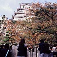 Okiku Well at Himeji Castle is said to be haunted by a 500-year-old ghost.