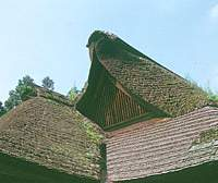 The roof of an old village house.