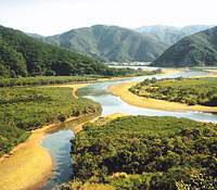 The river system that flows through the mangrove forest in Sumiyo-son in Amami-Oshima; it's a popular destination for kayakers | CHRIS COOK PHOTOS; RABBIT PHOTO COURTESY OF MIKIO TAKASHI