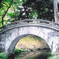 Engetsu-kyo, or Full Moon Bridge, at Koishikawa Korakuen; Tomoko Hirata dance in Gokokuji; a purple potato-shaped stone at Koishikawa Botanical Garden