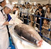 Give it a hack: Visitors to Tabi Fair 2009 at Pacifico Yokohama watch a tuna-carving demonstration Friday. | YOSHIAKI MIURA PHOTO