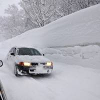 New high: Snow towers over cars early Monday on a road near the Sukayu hot springs resort in Aomori Prefecture.   KYODO