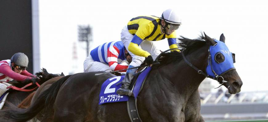 Grape Brandy triumphs at February Stakes