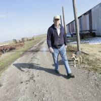 Bean to pick: Hugh Bowman of Sandborn, Indiana, is among the 94 percent of soybean farmers in the state who grow Monsanto's Roundup Ready beans. | THE WASHINGTON POST