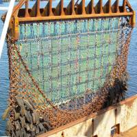 War on the seabed: the Hebridean shellfishing battle