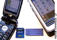 An SD card for a cell phone and a Memory Stick for a personal data assistant are shown in this photo.
