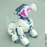 The new version of Sony's robot dog Aibo is programmed to pick up and play with his bone.