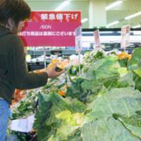 Bargain for now: A shopper picks up a pumpkin loaf at a Jusco store in Narashino, Chiba Prefecture, on Friday. | KYODO PHOTO