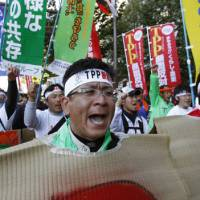 Digging in: Farmers from tsunami-hit Miyagi Prefecture protest Japan's joining the Trans-Pacific Partnership on Oct. 26.   AP