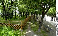 Steel fences have been erected in Nagai Park to keep Osaka's homeless out.