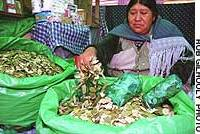 A woman in La Paz sells coca leaves cultivated in a legal coca-growing zone.