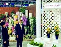 Princess Hisako, the widow of Prince Takamado, admires orchids dedicated to the late prince at an international orchid fair in Tokyo.