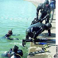 Members of Marine Animal Lifeline clamber on to the concrete embankment of the Katabira River in Yokohama after abandoning an attempt to capture Tama-chan.