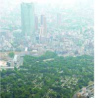 Aoyama Cemetery in Minato Ward, Tokyo, is accepting applications for vacant plots for the first time in 43 years.