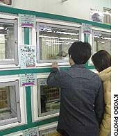 Customers view pets on display at a store in Kagawa Prefecture.