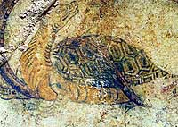 This painting of Genbu, a god that takes the form of a turtle with a snake coiled around it, is one of four adorning the walls of the ancient Kitora tomb in Asuka, Nara Prefecture. | PHOTO COURTESY OF THE CULTURAL AFFAIRS AGENCY