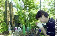 Toshiko Takahama, widow of the captain of Japan Airlines Flight 123, prays Thursday at a grave set up for the 520 who died when the plane crashed on Mount Osutaka in Gunma Prefecture 19 years ago.