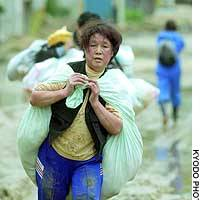 A woman carries a heavy load along a muddied road in Ojiya, Niigata Prefecture, one of the hardest hit areas in Saturday's earthquakes.