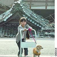 A girl in Kawaguchi, Niigata Prefecture, gives a dog a lift in front of a house wrecked by the recent quakes.