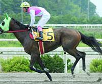 Horiemon runs its first race in the city of Kochi in July 2005.