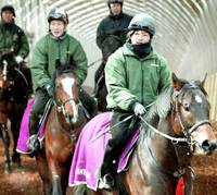 Trainers exercise their racehorses last month at Northern Farm Hayakita.