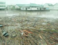 Rice paddies are covered with rising water and debris Saturday amid heavy rain in Kyushu. | KYODO PHOTO