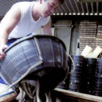 A fisherman empties his eel into a crate in Hamamatsu, Shizuoka Prefecture, for shipping to market in July 2000.   KYODO PHOTO