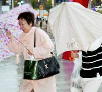 Women brave the strong winds generated by Typhoon No. 9, which hit Hakodate on Sept. 7. | KYODO PHOTO