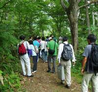 Turning over a new leaf: People take part in a 'forest therapy' experiment in Iiyama, Nagano Prefecture, in 2005. | COURTESY OF LI QING PHOTO
