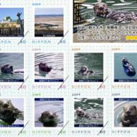 You otter be in pictures: 'Ku-chan,' a popular sea otter that frequents the mouth of the Kushiro River, will appear on stamps issued by Japan Post Service Co. | KYODO PHOTO