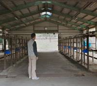 No sign of life: A dairy farmer in Nasukarasuyama, Tochigi Prefecture, looks at a now-empty cowshed after he stopped raising milk cows amid surging feed prices. | KYODO PHOTO