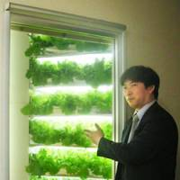 Food factory: Shigeharu Shimamura, president of Mirai Co. of Tokyo, explains in April how the firm grows vegetables indoors and sells them at the Green Flavor store in Matsudo, Chiba Prefecture. | KYODO PHOTO