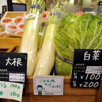 Details: Notices for vegetables grown in Fukushima Prefecture show the level of radioactive cesium — in this case, less than 10 becquerels per kilogram, well below the allowable limit — at a Cataloghouse store in Tokyo's Shinbashi area last month. | YOSHIAKI MIURA