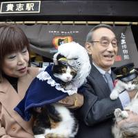 Purr-fect pair: Feline rivals Tama (left), a mascot cat at Kishi Station in Kinokawa, Wakayama Prefecture, and her likely successor, Nitama, are held up for a photo at the station Thursday.   KYODO