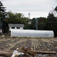 Nuked earth: Homes lie abandoned and farmland untended April 20 in Okuma, inside the exclusion zone and just 1 km from the wrecked No. 1 nuclear plant, in Fukushima Prefecture. | ROB GILHOOLY