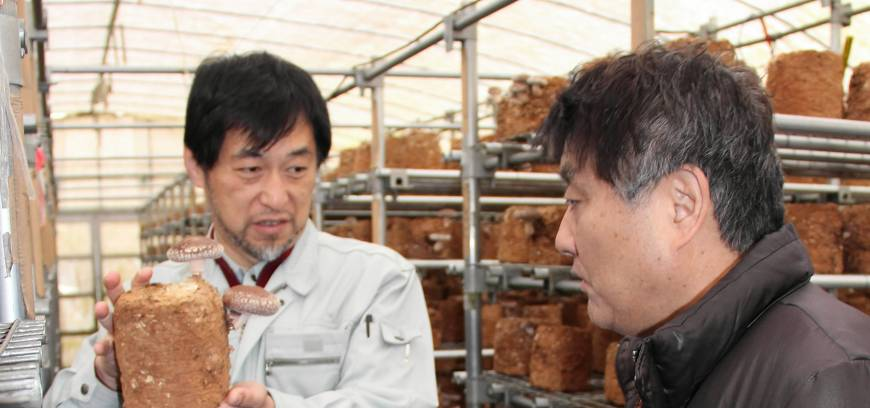 Nagoya aid for tsunami-hit city starts to pay off
