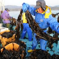 Fishermen look to revamp industry