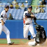 Onward and upward: Hiroyasu Tanaka (7) and the Tokyo Yakult Swallows will be hoping to use last season's playoff appearance as a springboard for further improvement.   KYODO PHOTO