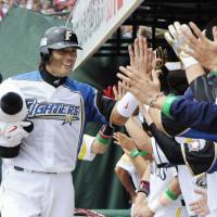 Star attraction: Fighters veteran Atsunori Inaba exchanges high-fives with his Pacific League teammates on Sunday at Kleenex Stadium. Inaba had three hits in the PL's 5-0 victory over the Central League in Game 3 of the All-Star Series. | KYODO