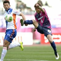 Start with a bang: Yoichiro Kakitani (right) scores to give Cerezo Osaka a 1-0 win over Albirex Niigata on Saturday. | KYODO