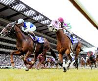 Daiwa Major, left, crosses the finish line, edging out Kongo Rikishi O to triumph at the 57th Yasuda Kinen at Tokyo Racecourse on Sunday afternoon.   KYODO PHOTO